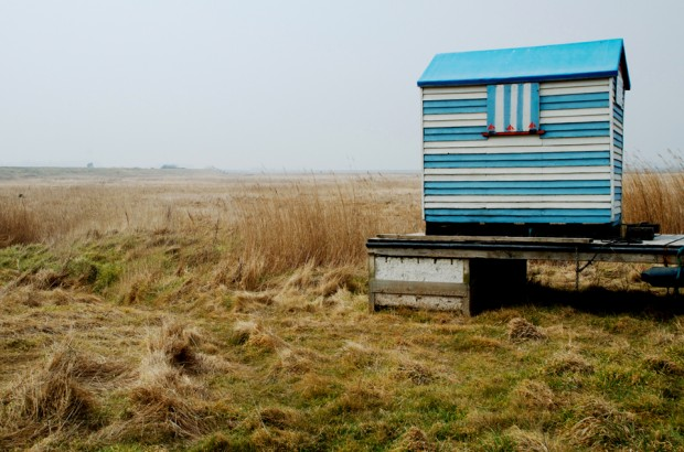 Hut 620x410 Aldeburgh Marshes to Plant Poppy Seeds